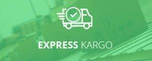 Şehirler arası Express Kargo
